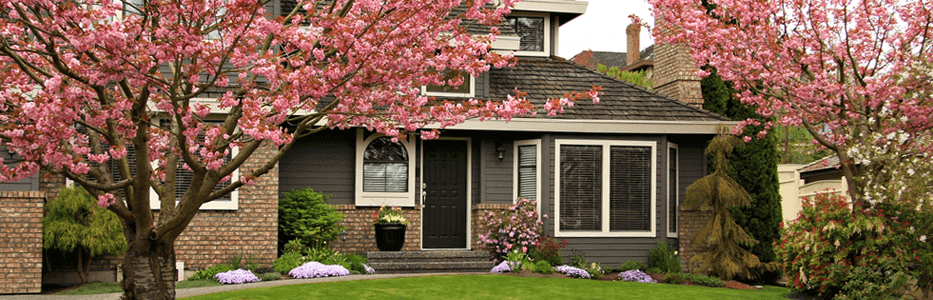 1-curb_appeal